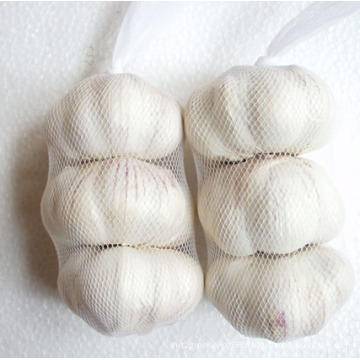 Fresh Garlic/4.5cm; 5.0cm; 5.5cm etc