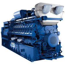 Honny Deutschland Mwm Schiefer Gas Generator