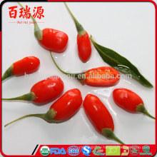 Первую партию органических goji ягоды годжи фруктами, что ягоды годжи свободной серы