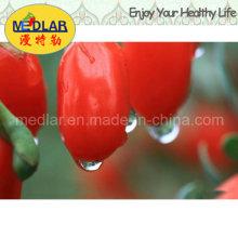 Alimento orgânico da nêspera orgânica Wolfberry chinês - 220PCS / 50g