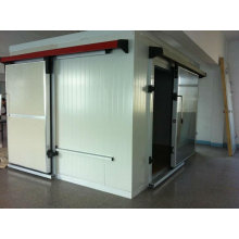 Fish Deep Freezer with Insulation