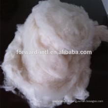fibre de cachemire blanche mongole 15.5mic