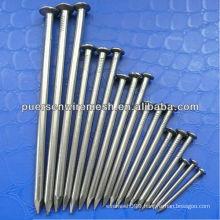 Common Nails,Iron Nail(factory)