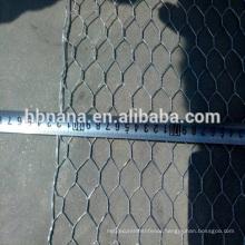 BWG 14-21 galvanized hex netting mesh / Hex Wire Netting