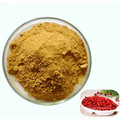 Reliable Kosher Goji Berry Fruit Juice Powder