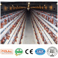 Agriculture Poultry Farm Layer Cage Equipment
