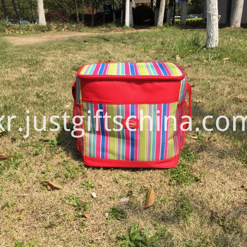 Item Name-Promotional Vertical Stripe Henkel Cooler Bags_3