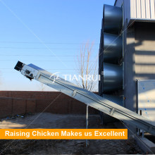 Egg Chicken Used Poultry Manure Removal Machine for Layer Cage