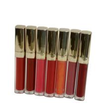 Marque privée de brillant à lèvres liquide premium OEM