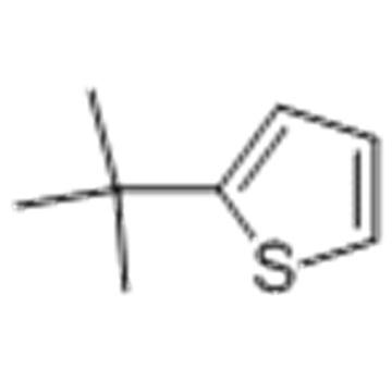 Thiophene,2-(1,1-dimethylethyl) CAS 1689-78-7