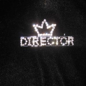 Crystal Pageant DIRECTOR Sash Pins