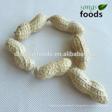 Peanut du fabricant de sacs de pp à Dubaï