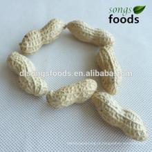 Amendoim de fabricante de sacos de pp em dubai