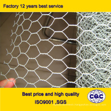 Galvanized Chicken Wire Netting for Poultry Farms