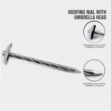 Hot Selling Building Roof Nails with Nice Price