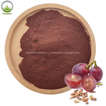 Natural Anti-Oxidant top Quality Grape Seed extract Powder
