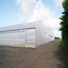 ODM for Greenhouse  Pc Board Skyplant Large Multi Span Greenhouse for Agriculture export to Kuwait Exporter