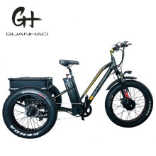 750W Adult 3 Three Wheels Cargo Bike Electric Fat Tricycle