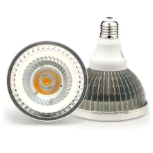 PAR 38 30W COB SMD E27 LED Lamp for Hotel