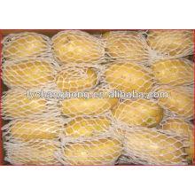 2014 fresh potato/potato for sale