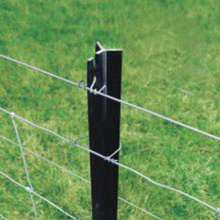 Star Pickets Steel Fence Post