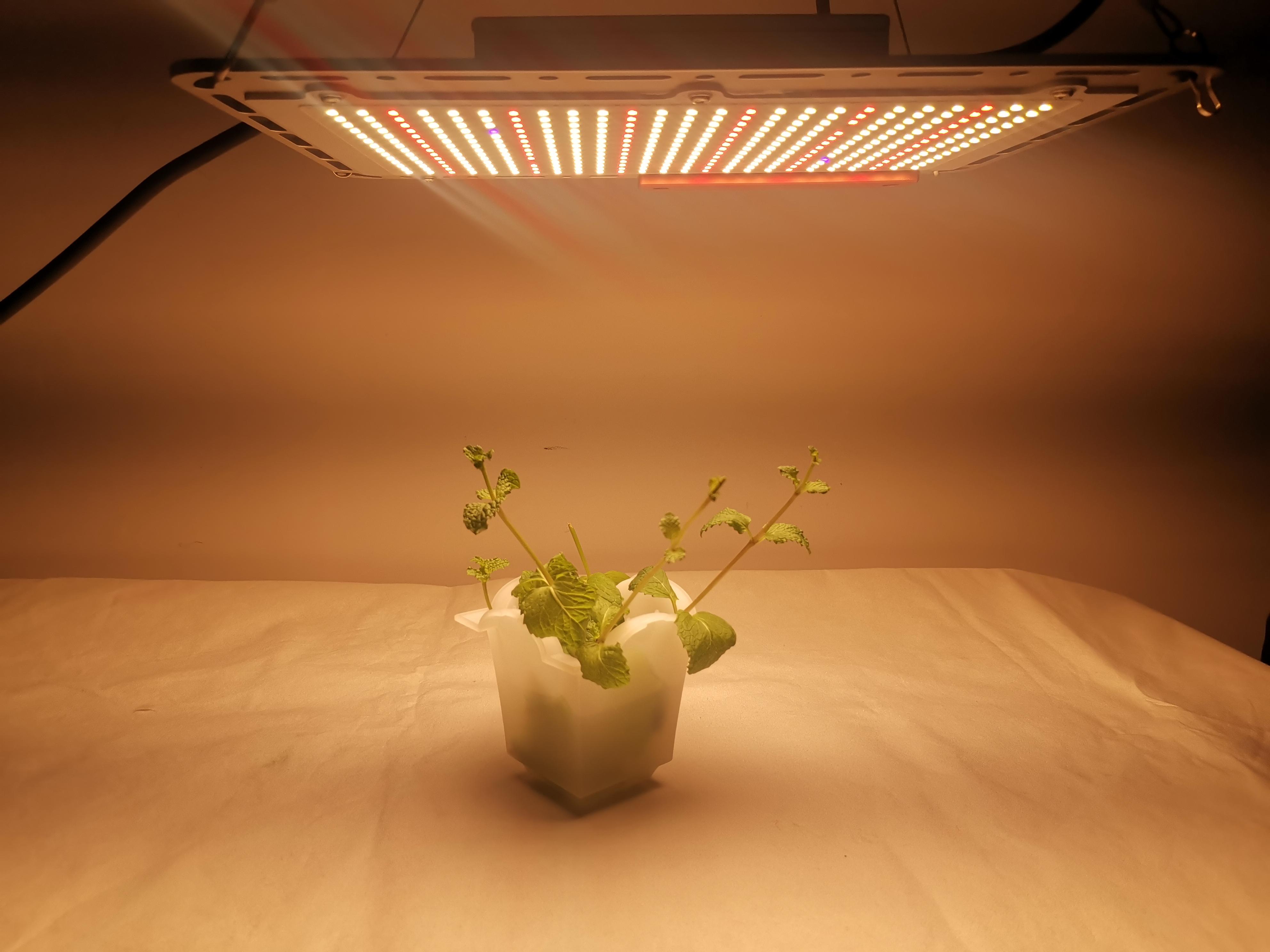 Diy Quantum Board Grow Light