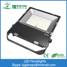 Floodlighting de 100w LED de plantas europeas