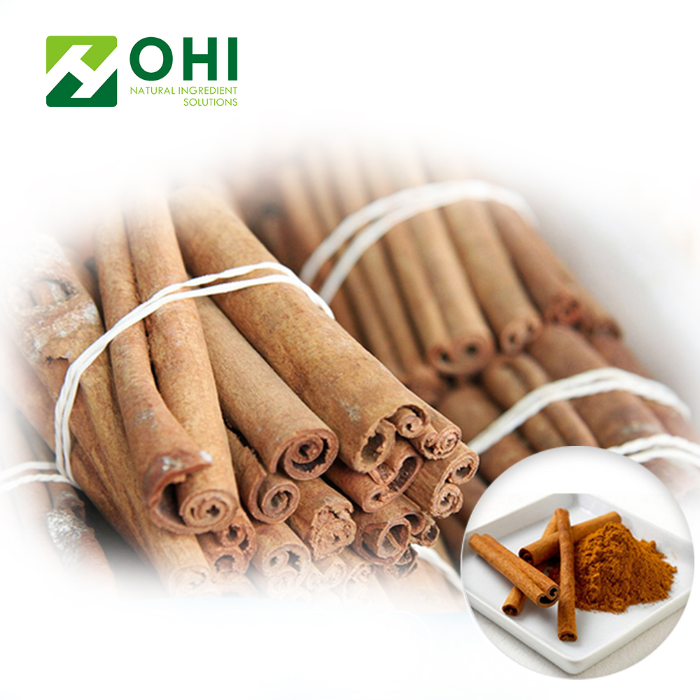 Bulk Cinnamon Bark Powder Extract