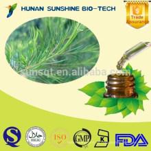 Aceite orgánico de Essentail del árbol del té / antibacteriano, pasta de dientes, producto del pesticida / aceite australiano del árbol del té