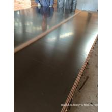 Panneaux de palettes avec noyau noir Poplar Core Première qualité