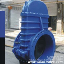 Cast Iron Gate Valve with by Pass Valve
