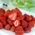 Bulk vacuum packed freeze dried strawberry powder for bakery or ice creams