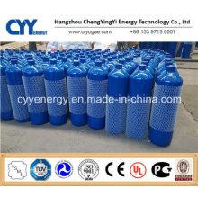 Le plus récent petit cylindre portable d'oxygène