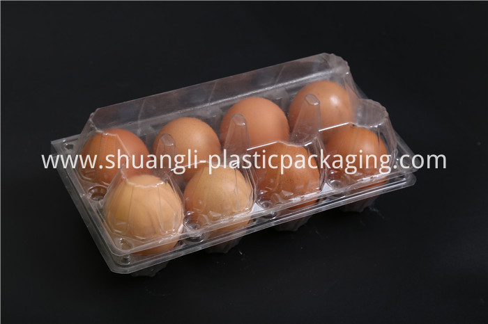 Disposable Plastic Egg Tray