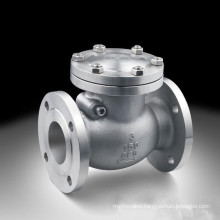 ANSI Flange Type Ss Swing Check Valve