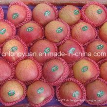 Gute Qualität chinesischen frischen Qinguan Apple