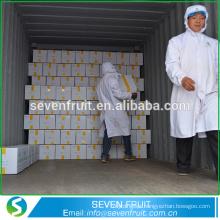 China comestíveis comuns nozes ao atacado âmbar cru à venda