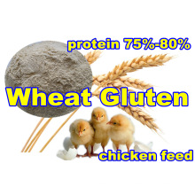 Whaet Gluten for Feed with High Protein (75% 80%)