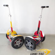 Wind Rover High Quality 250cc Electric Dirt Bike for Kids