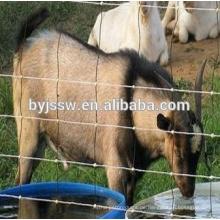 Grasland-Zaun / benutzte Pferdezaun-Platten / Vieh-Zaun
