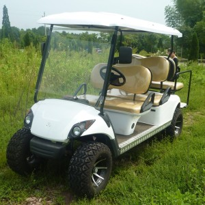 Cheap Electric 6 Seats Golf Cart