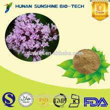 Heißer Verkauf Thymian-Extrakt 98% Thymol, Thymian-Blatt-Extrakt-Pulver Thymus serpyllum L.