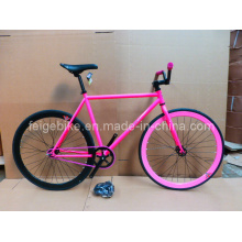 Hot Sale Fixed Gear Bike Colorful Bicycles (FP-FGB003)