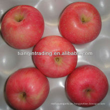 Qixia Fuji Apfel