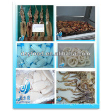 Frozen squid products