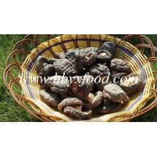 Shiitake séché à prix inférieur / champignon Shiitake lisse séché