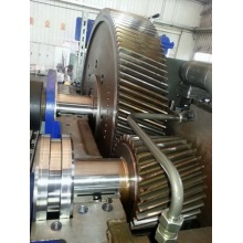 Wholesale High Quality Steel Gear