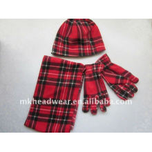 Sombrero polar del paño grueso y guantes y pañuelo fijó los accesorios del invierno