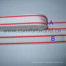 Colorful Webbing PP