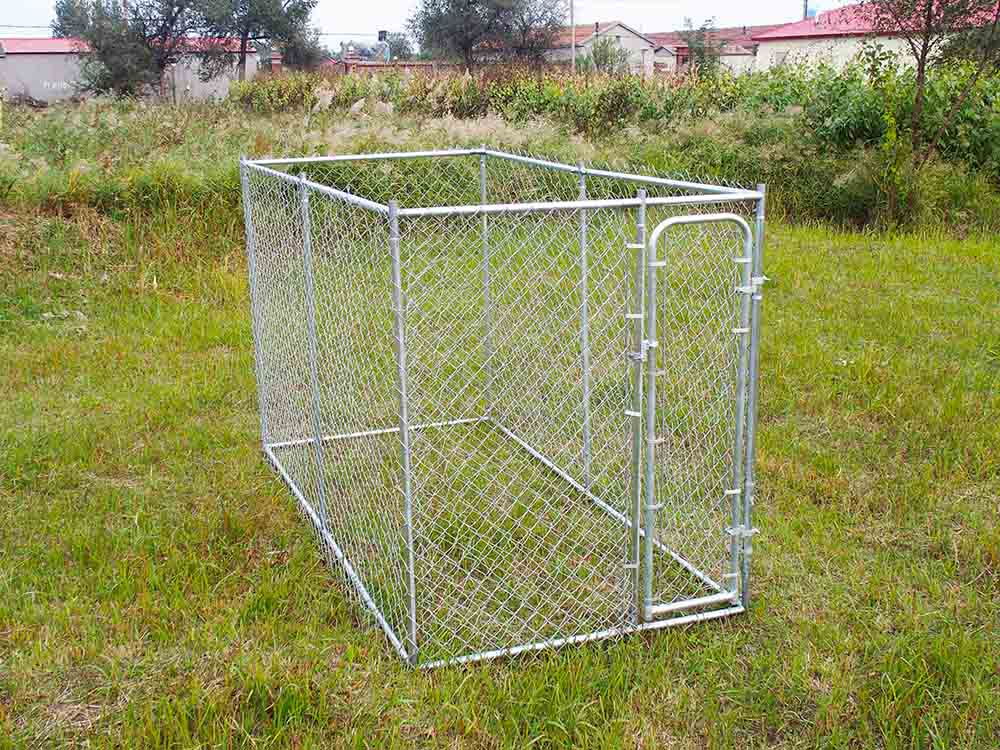 galvanized chain link dog kennel